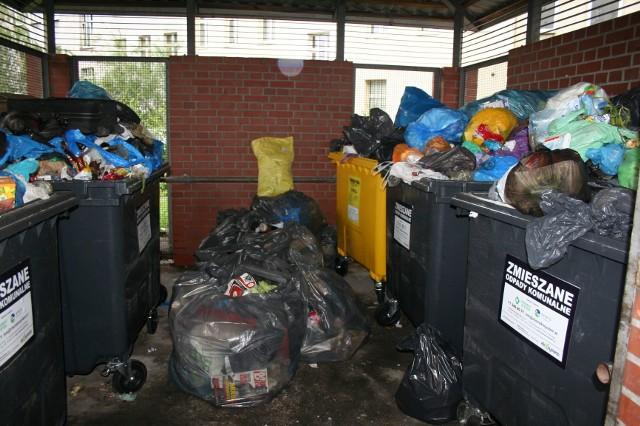 Przepełnione pojemniki na śmieci na Starym Mieście i w Śródmieściu.
