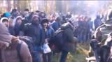 Nielegalni migranci szturmem atakowali naszą granicę. Polscy mundurowi wyłapali większość, która się przedarła