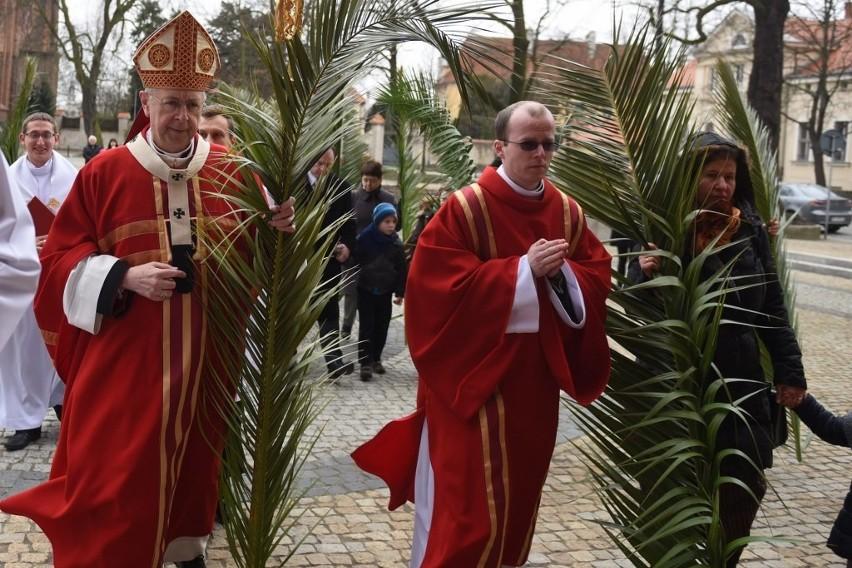 Niedziela Palmowa w poznańskiej katedrze