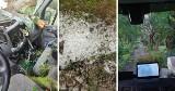 Nawałnica z gradem w gminie Gniew. 28.07.2021 r. Powalone drzewa, zerwany dach. Straty szacowane na kilkaset tysięcy złotych!