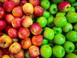 Ceny jabłek w sklepach wyższe niż w skupie. UOKiK prowadzi kontrole w marketach
