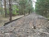 Znowu kradną tory? Tym razem elementy starych linii kolejowych znikają w okolicach Gubina, na wysokości Pleśna. Ktoś tego pilnuje?