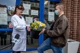 Sto tysięcy tulipanów rozdano medykom w wielkopolskich szpitalach. Producenci kwiatów cierpią z powodu pandemii koronawirusa