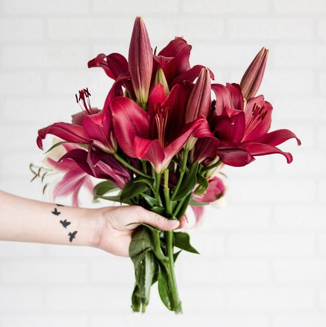 Kwiaty zdobią mieszkania, ogrody i balkony. Są także znakomitym podarunkiem dla osoby, którą darzy się uczuciem - dla mamy, babci, siostry czy ukochanej. Historia wręczania kwiatów jest tak długa, jak ich symbolika. Liczy się rodzaj kwiatka, kolor, a nawet to jak bardzo są rozwinięte ich pąki. Poznajcie znaczenie kwiatów, ta wiedza przyda się każdemu.