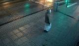 Gwałciciel z Częstochowy rzucił się na młodą kobietę i dusił ją. Nadal jest na wolności ZDJĘCIA + WIDEO Z MONITORINGU