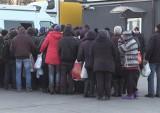 CBŚP w ubojni. Nielegalnie pracowało 142 Ukraińców! (zdjęcia, wideo)