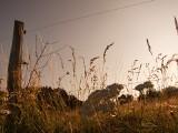 Te gospodarstwa agroturystyczne w województwie lubelskim są polecane przez turystów!