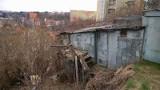 Ktoś powiesił martwego lisa na terenie ogródków działkowych na gdańskich Siedlcach. Policja szuka sprawcy