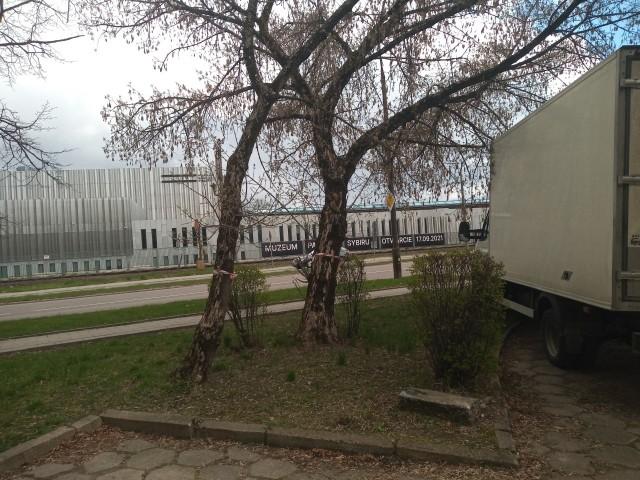 27 kwietnia 2021 roku urzędnicy miejscy przeprowadzą oględziny, po których zdecydują czy wydadzą zgodę na usuniecie drzew rosnących przy Sienkiewicza i Poleskiej