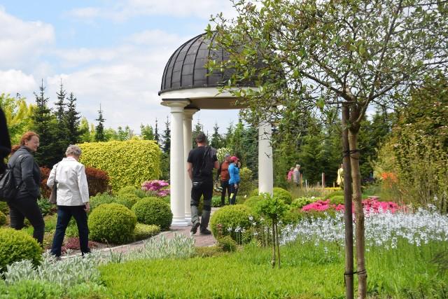 Ogrody Kapiasów w Goczałkowicach Zdroju. Na początku czerwca zachwyca kwitnącymi rododendronami i azaliami.