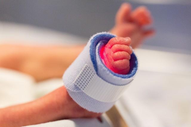 We wrocławskim szpitalu urodziły się czworaczki