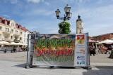 Jarmark Świętojański przy białostockim ratuszu otwarty jeszcze w niedzielę (zdjęcia)