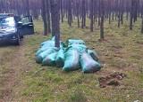 Straż leśna z Nadleśnictwa Skwierzyna rozbiła szajkę złodziei mchu
