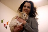 Adopcja zwierząt w Lublinie. Bezdomne króliki czekają na właścicieli