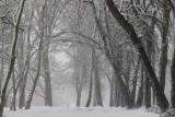 Pogoda na Boże Narodzenie 2020. Za kilka dni zacznie się astronomiczna zima. Jaka będzie nadchodząca zima?