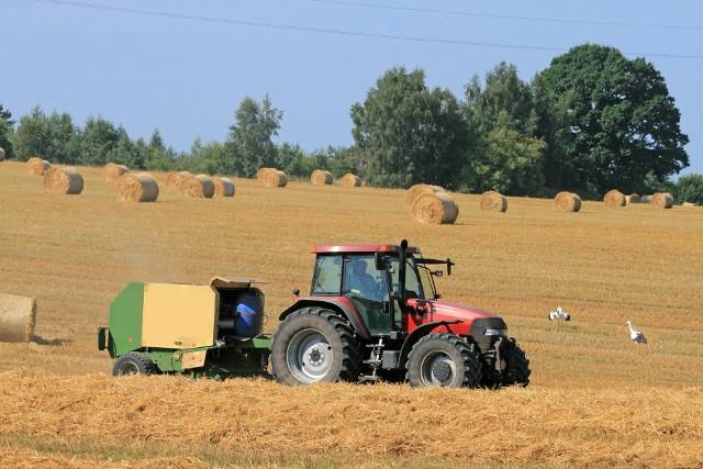 Zdaniem rządu podstawową formą użytkowania państwowych działek rolnych powinna być dzierżawa.