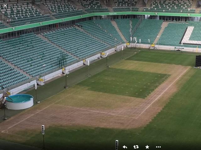 Murawa na stadionie Legii na trzy dni przed Superpucharem Polski
