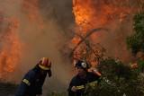 Algieria: 25 żołnierzy zginęło w ogniu, gdy pomagali mieszkańcom wsi. W Grecji giną bociany