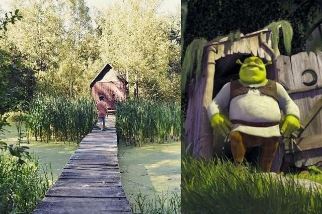 Chatka Shreka na Śląsku. Traficie tam na rowerze? Pomysł na majówkęZobacz kolejne zdjęcia. Przesuwaj zdjęcia w prawo - naciśnij strzałkę lub przycisk NASTĘPNE
