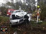 Wypadek koło Opalenicy - jedna osoba została ranna po tym, jak audi uderzyło w drzewo [ZDJĘCIA]
