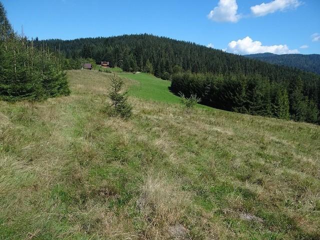 Polana Dziubasówki - w tym rejonie miała powstać stacja narciarska. Nic jednak z tego nie wyszło