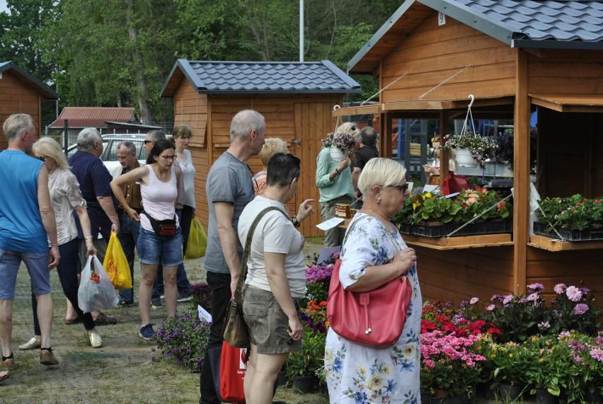W sobotę, 01.08.2020 kolejny Bazarek Natury w Krępie Słupskiej