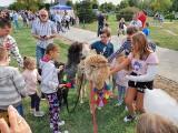 Festyn na zakończenie lata w Skarżysku-Kamiennej. Dzieci były zachwycone alpakami (ZDJĘCIA)