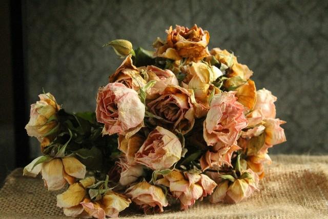 Bukiety z suchych kwiatów mają swój urok. I nietrudno przygotować jej samemu.