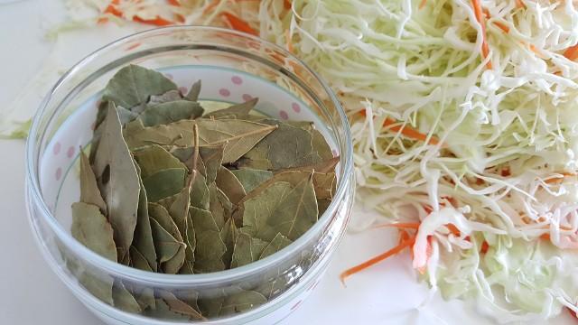 Kapusta kiszona cieszy się w Polsce dużą popularnością. Jest bogata w wiele korzystnych dla zdrowia składników odżywczych. Dodatkowo to przekąska niskokaloryczna (w 100 g produktu znajduje się tylko 12 kcal), zawierająca mało tłuszczu i dużą ilość błonnika. Kapusta kiszona ma dobroczynny wpływ na nasz organizm. Pomaga w wielu dolegliwościach i warto ją jeść przez cały rok - szczególnie samodzielnie przyrządzoną.Kapusta kiszona ma pozytywny wpływ na układ pokarmowy, obniża poziom cholesterolu we krwi, wspomaga odporność i jest bogatym źródłem witamin oraz mikro- i makroelementów.Kto szczególnie powinien włączyć kapustę kiszoną do swojej diety? Zobacz na kolejnych slajdach >>>>>