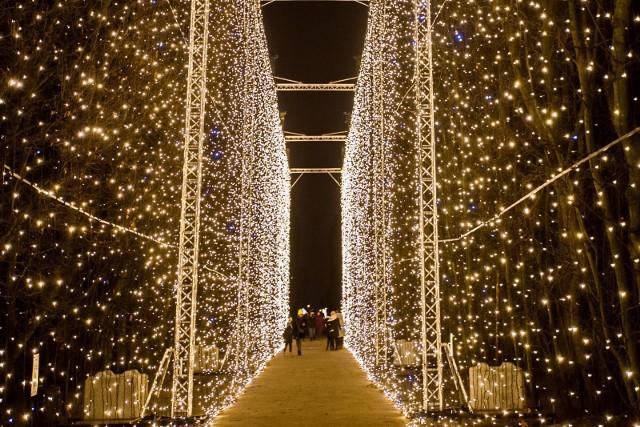 Iluminacje w Parku Oliwskim w 2018 r.