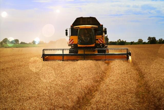 Nawet 500 tys. zł na rozwój usług rolniczych. Kto może ubiegać się o wsparcie?Wsparcie można otrzymać na świadczenie usług rolniczych związanych np. z produkcją roślinną