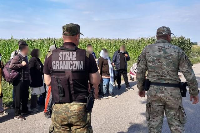 Nielegalni imigranci zatrzymani przez funkcjonariuszy POSG na granicy polsko-białoruskiej