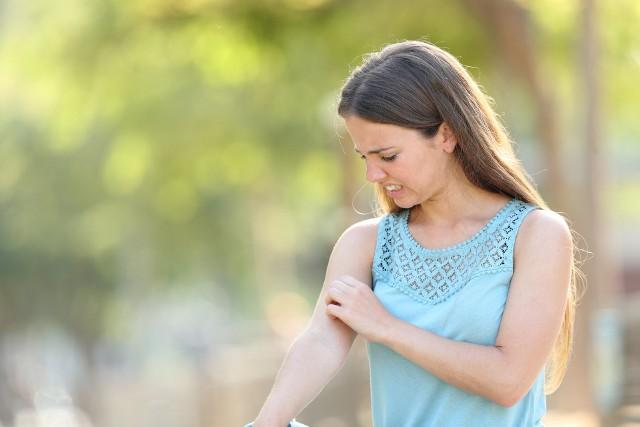 Masz dość komarów? Poznaj sposoby, dzięki którym w końcu uda Ci się je pokonać!