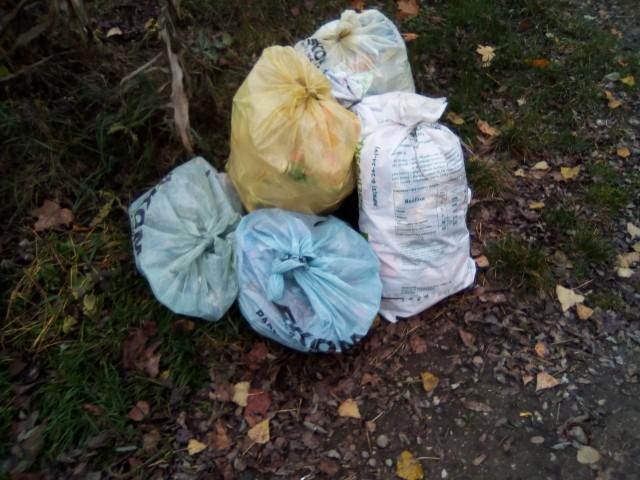 Od 1 stycznia w Proszowicach wzrasta opłata śmieciowa
