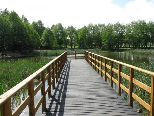 W Zespole Wodno-Parkowym w Brzoziu ma powstać miejsce integracji międzypokoleniowej i rekreacji
