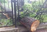 Burze w Podlaskiem i Białymstoku. Takie szkody wyrządziła w mieście i w regionie (zdjęcia)