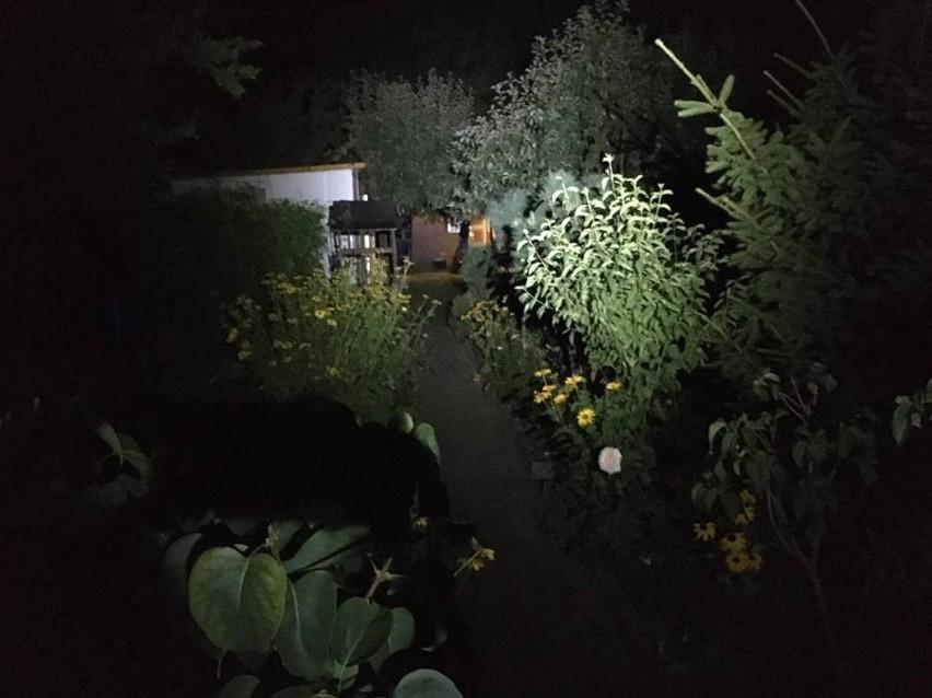 Do zabójstwa doszło na ogródkach działkowych przy ulicy...