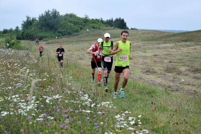 """Trasy biegów - półmaratonu i """"dychy"""" wytyczone były przez lasy, łąki, wśród pól. Biegaczom towarzyszyły piękne widoki."""