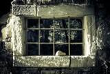 Miejsca grozy na Podlasiu. Podobno tam straszą duchy