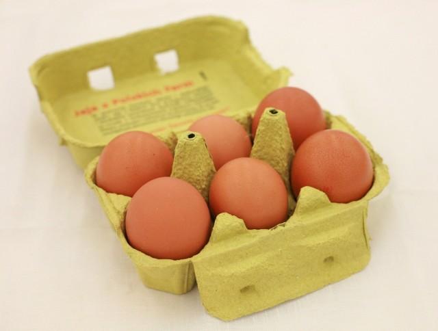 - Spożycie produktu bez właściwej obróbki termicznej lub możliwe przeniesienie bakterii z jaj na inne powierzchnie, może prowadzić do zakażenia człowieka i wystąpienia salmonellozy- wskazano.