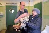 To będzie pierwsza w Polsce kura z protezą nogi. Otrzyma ją w lecznicy w Przemyślu [WIDEO]