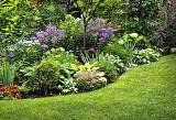 Powrót do Edenu, czyli słów kilka o ogrodzie ekologicznym