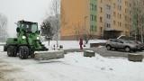 Samochody rozjeżdżają ścieżkę dla pieszych i rowerzystów w parku na Ustroniu