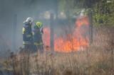 Powiat ostrołęcki. Znów pożary w lasach i na nieużytkach. Tylko w środę 27.05.2020 dwa takie zdarzenia