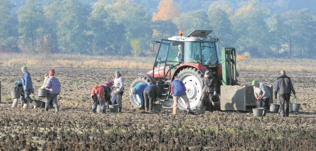Nowy projekt ustawy o obrocie ziemią trafi we wtorek na forum Rady Ministrów