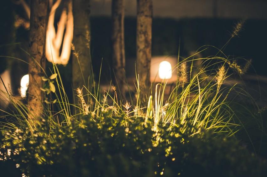 Ciekawa Aranżacja Ogrodu Za Pomocą Pomysłowego Oświetlenia
