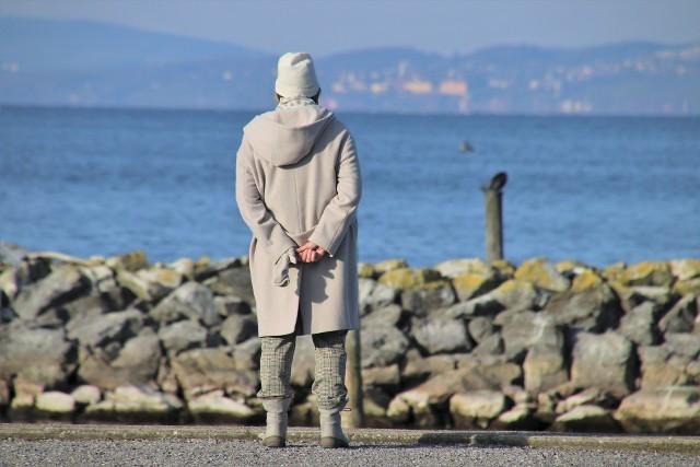 Emerytura Stażowa w projekcie Nowego Ładu PiS? Kiedy złożyć wniosek o emeryturę, aby była jak najwyższa.