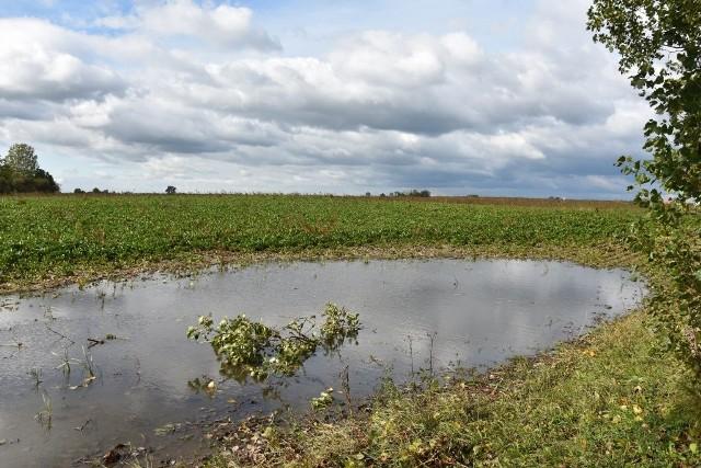 Na niektórych polach stoi woda, ale to nie oznacza, że wiosną nie powróci susza glebowa. Wciąż trzeba starać się ją zatrzymać