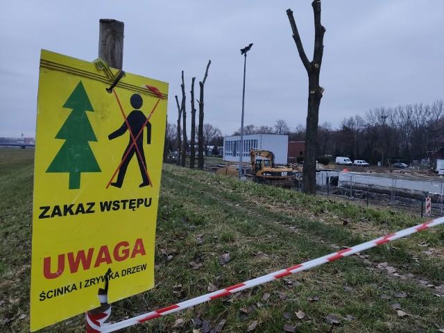 Wycinka drzew przy modernizowanej oczyszczalni ścieków w Opolu