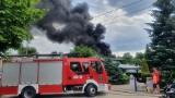 W Świeciu paliła się fabryka styropianu. Gęste kłęby dymu nad miastem. Zobacz zdjęcia